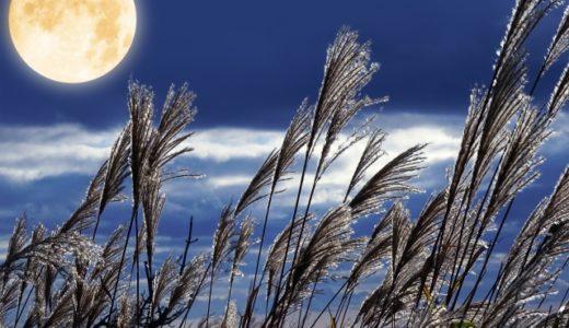 ⑤月気質とは?